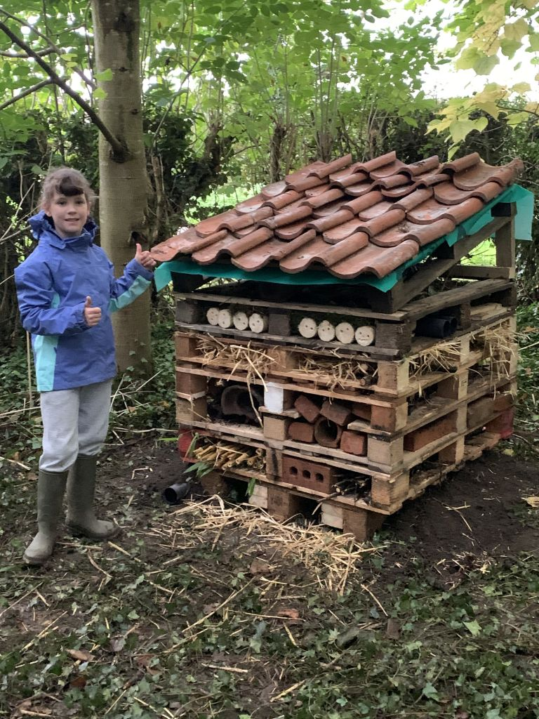 Picture of Bug Hotel in Low Costa Mill Pickering