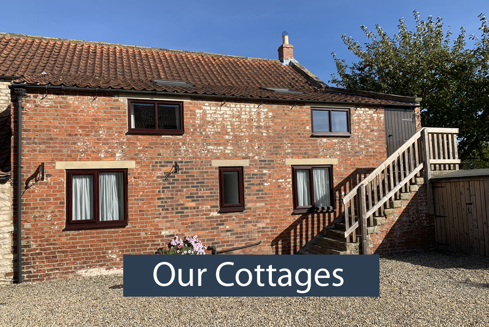Our Cottages - Low Costa Mill Pickering Self Catering Cottages