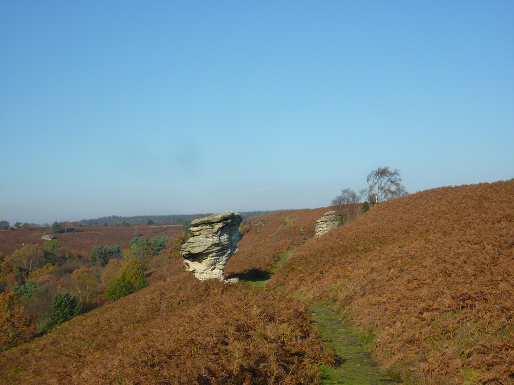 Bridestones at Dalby Forest