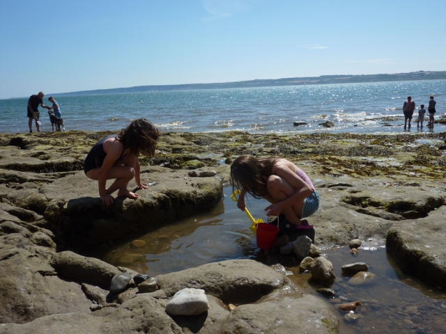 Rockpooling at Filey Beach dog friendly family friendly