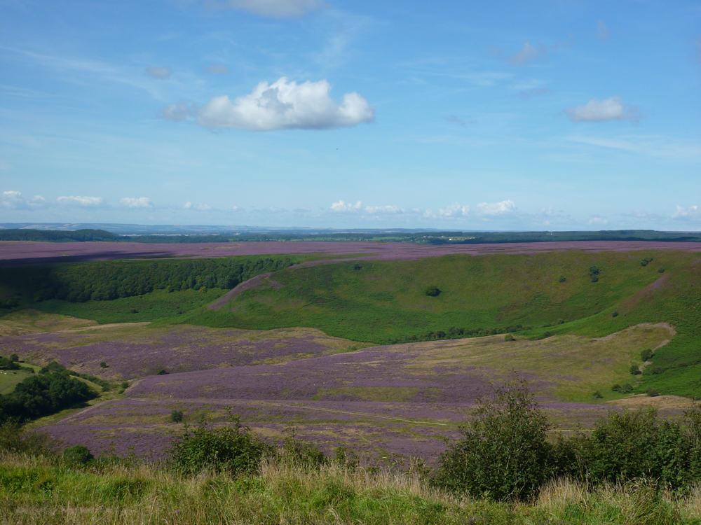 North York Moors National Park Hole of Horcum