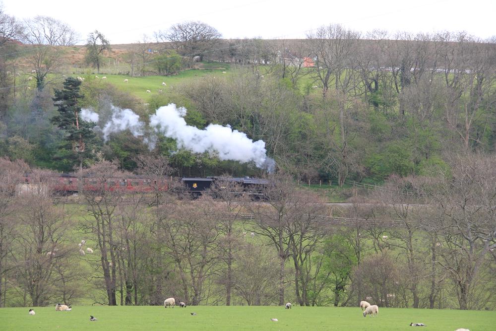 Steam Train North Yorkshire Moors Railway North York Moors National Park