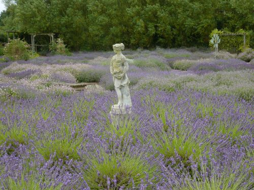 Wolds Way Lavender - Historical Houses, Gardens and Musems Low Costa Mill